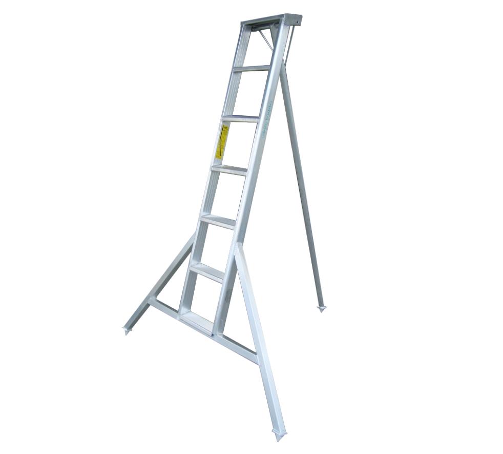 Orchard Ladder 7 ft