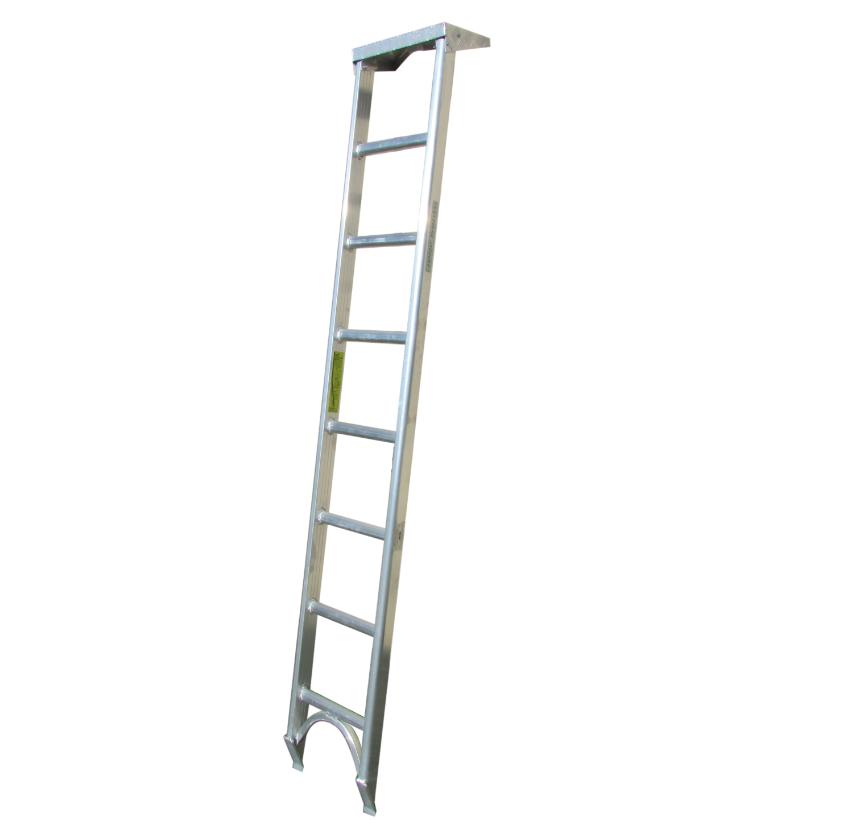 Forestry Ladder