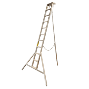 Property Care Ladder