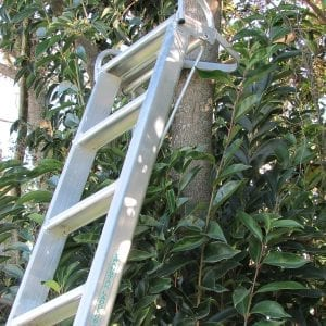 Tree Grip Head, Property Care Ladder